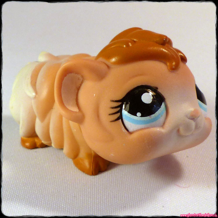 Littlest Pet Shop - Guinea Pig #2062