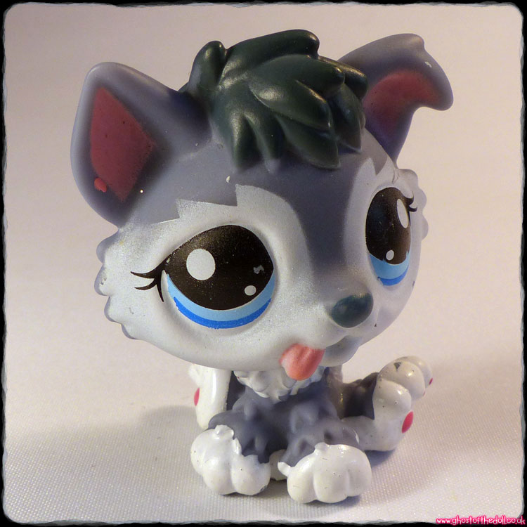 Littlest Pet Shop - Dog Husky #2036 RARE FAKIE!
