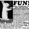 Northwestern School of Taxidermy ~ Adverts [1910-1953]