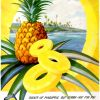 "Dole ~ Fruit Adverts [1945-1946] ""Hawiian Pineapple"" Illustrations by Lloyd Sexton"