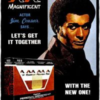 Magnificent ~ Hair Care Adverts [1968-1971]